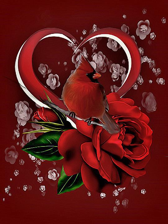Cardinal and heart