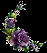 purple roses cutout